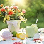 Sådan får du en god gartner i Herning – 3 tips til din søgen