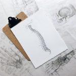 Få hjælp til dine stive led hos din kiropraktor i København