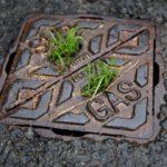 Kontakt kloakservice i Nibe når uheldet er ude