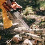 Har du brug for en hjælpende hånd til skoventreprise? Så læs med
